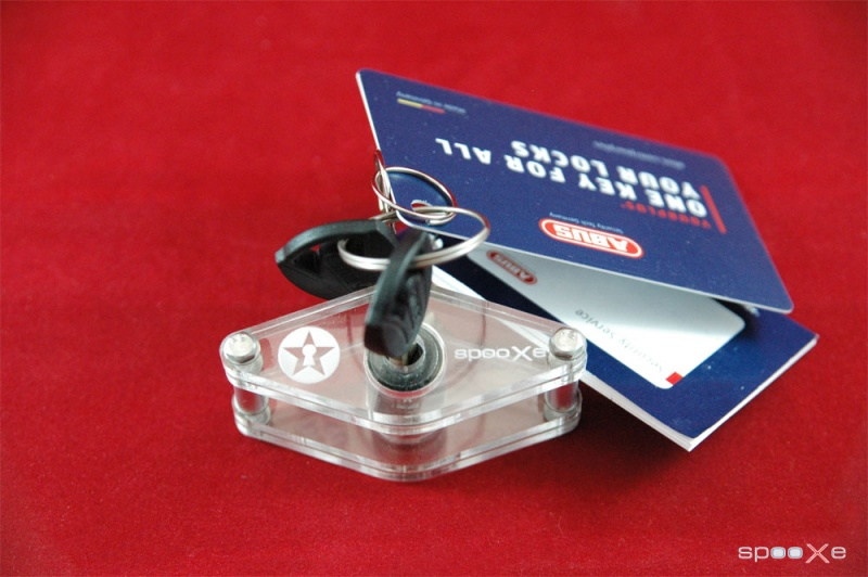 Disc Detainer Lock Training Set